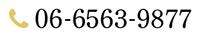 0665639877